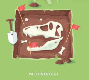 Identifying Dinosaurs
