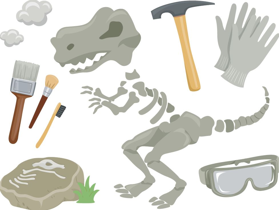 Dinosaur Dig & Research Project