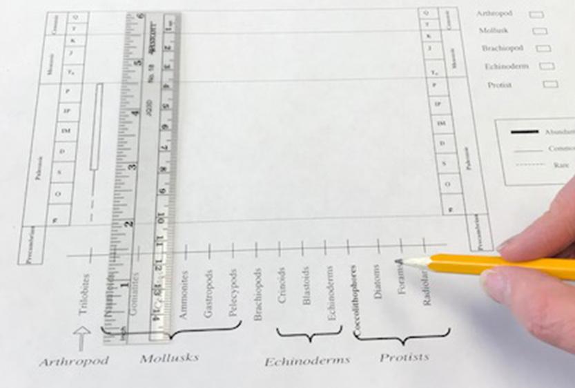 Free printable Geology Worksheets science activities